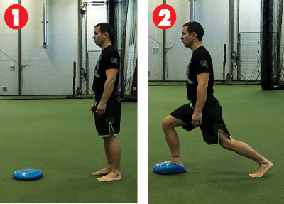 Lunge Stability Disk